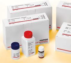 human kit 2